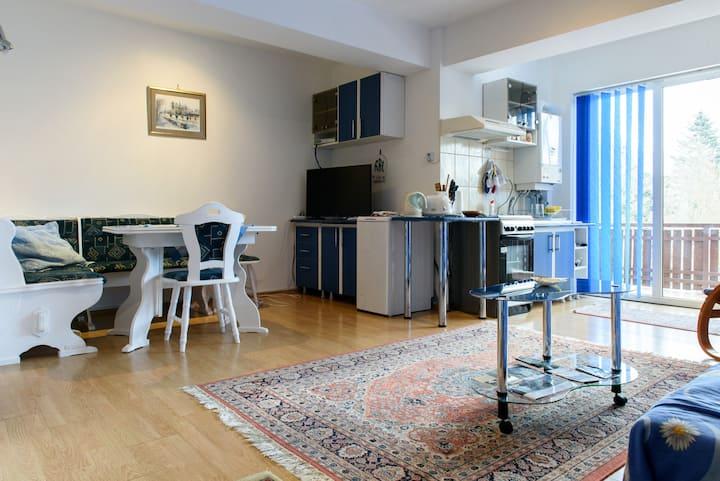 Splendid mountainview 2 room apartment near castle