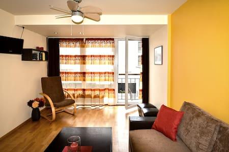 Cozy apartment city center (23m²) - Palanga - Huoneisto