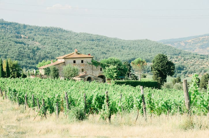 Fattoria Lavacchio:villa with private pool - Pontassieve - Villa