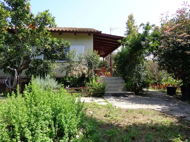 """Kumquat Villa"" Kalamata beach - Messinia - 一軒家"