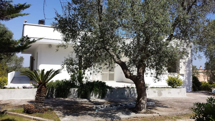 Casa Vacanza Tenuta Schiauddi