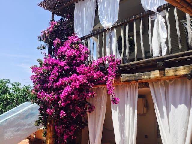 Appartamento Catiuscia - Golfo Aranci - Lejlighed
