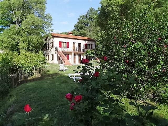 Les Gîtes du Camps de las Basses - Amélie-les-Bains-Palalda - Apartment