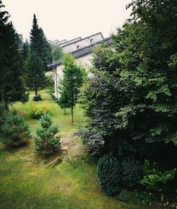 Schön im Wald - Schönwald im Schwarzwald - Apartmen