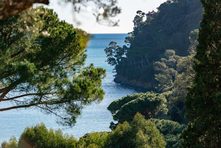 La Dolce Vita, Pool, oceanview