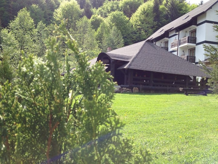 Casa Octavian the idyllic place  in Bucovina
