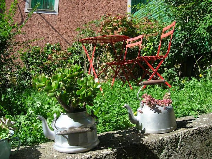 Le studio du pic vert à Belvédère