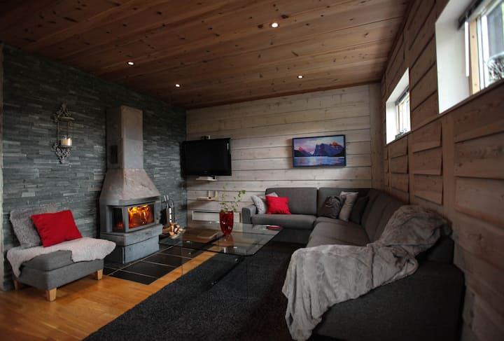 Moderne hytte med gode fasiliter .