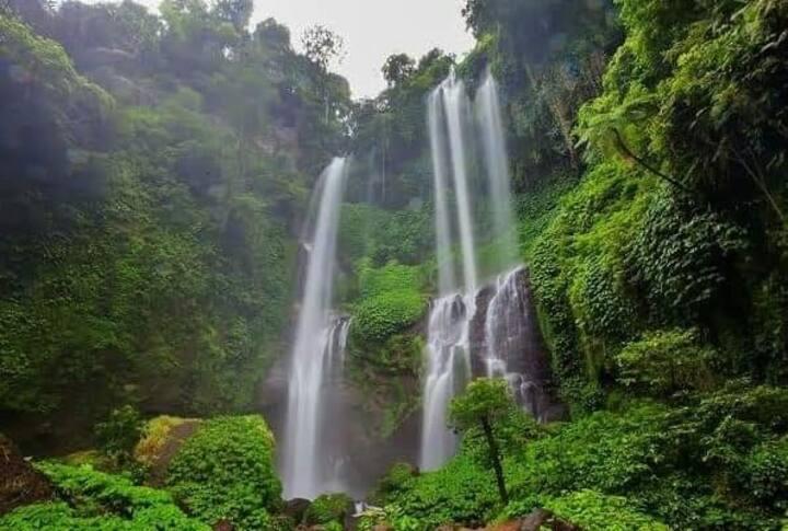 Sugigede friendlyhomestay sekumpul waterfall