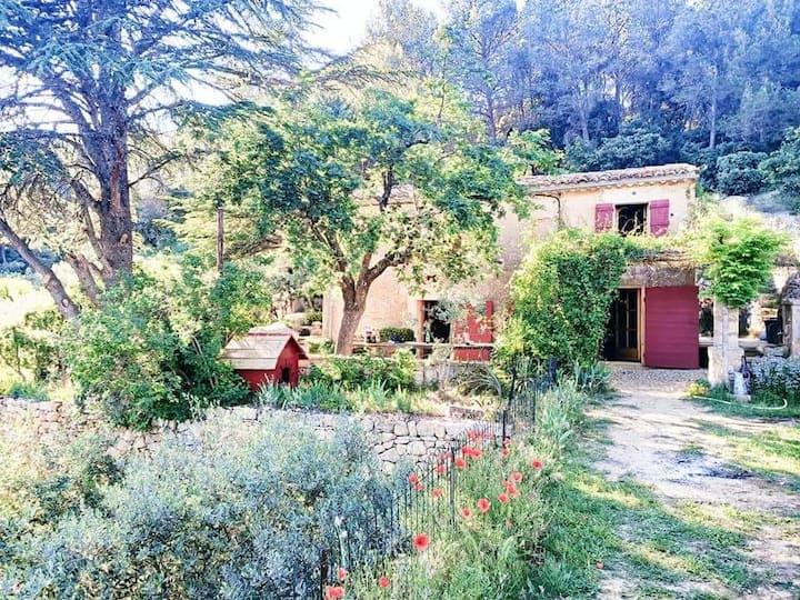 Cabanon provençal avec jacuzzi et pétanque
