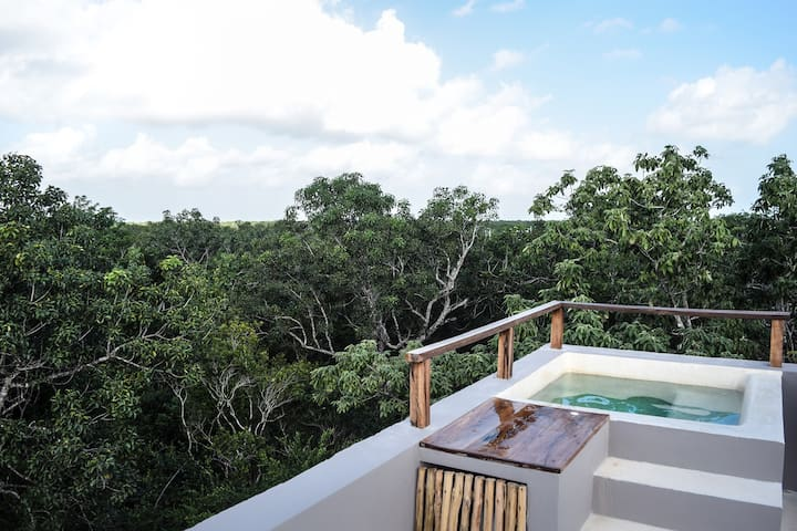 Sky Penthouse/Rooftop Plunge Pool6