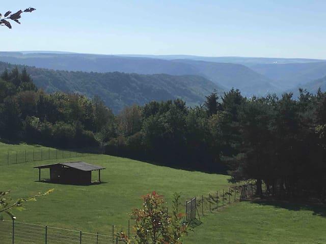 Blick vom Freisitz/Terrasse .... vom Moseltal in den Hunsrück