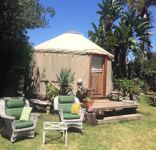 Cozy Yurt on large property in Funky Leucadia