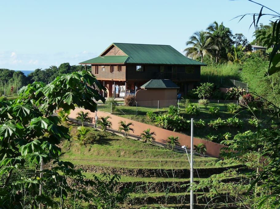 View of house from roadside circa 2008 - trees now provide more privacy