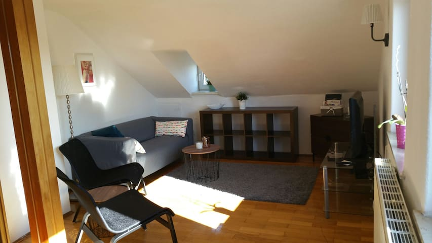 Ulm City Full Apartment 1-4 Persons