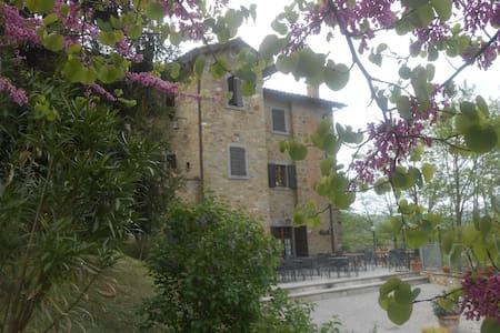 Agriturismo Il Palazzo appartamento piscina - Lisciano Niccone