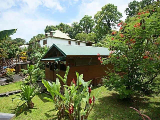 Lodge 1 - Triple - Les Bananes Vertes
