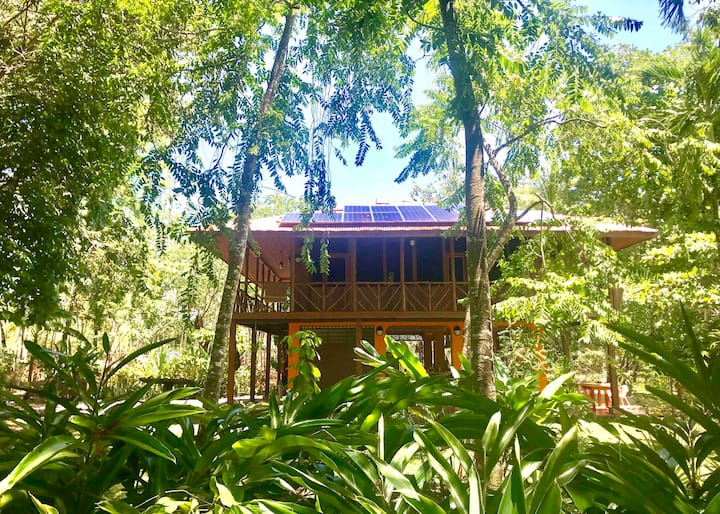 Room on the beach. Between jungle and mangrove