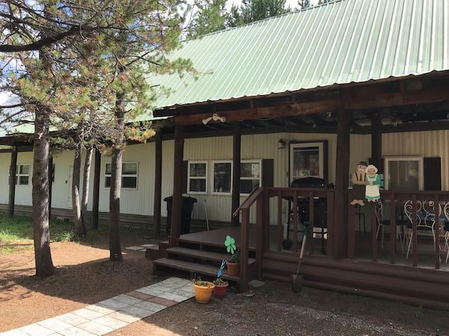 Grandma's Home in the Woods