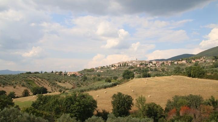 Al Ginepro - Camera Verde