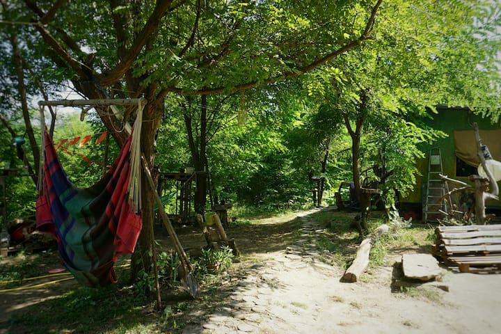 PureNature Campsite - RV/Tent 3km from Sighisoara!