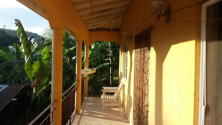 GREEN LEAF GARDEN - Port Antonio - Apartment