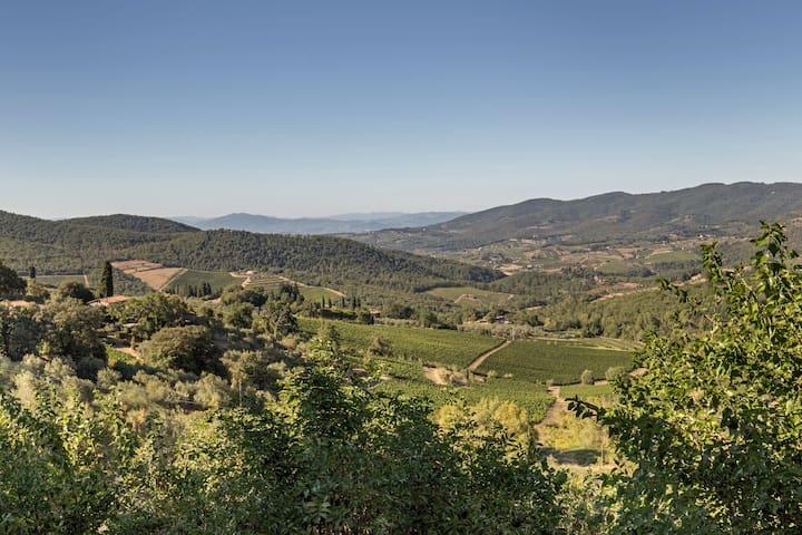 Terrazza a Campana - Panzano In Chianti - Daire