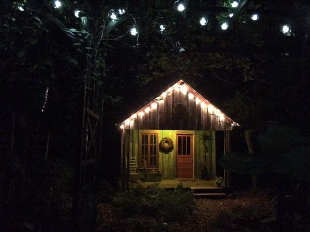 Artist Cabin in the woods