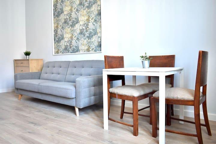 Paderewskiego Apartment,free WiFi&perfect location