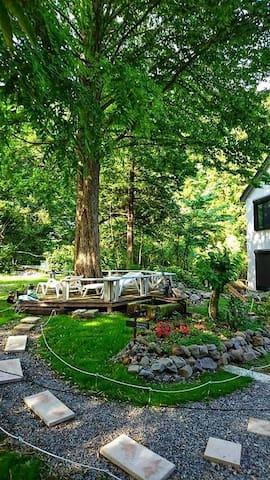 (特価!朝食付き)杜の宿 個室 Bamboo ベッド4