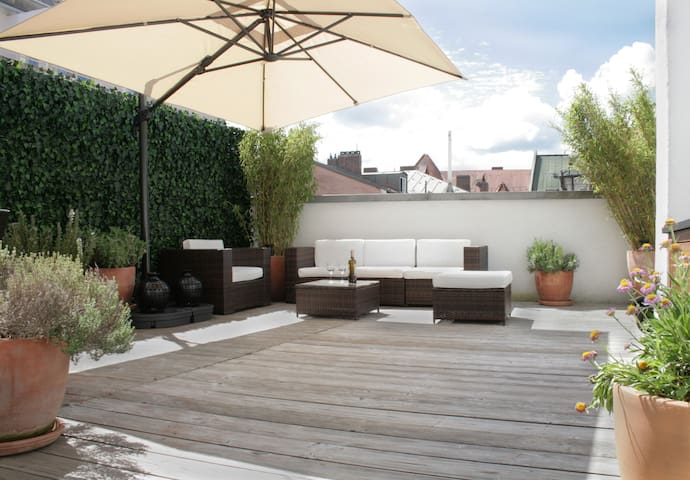 Very Central Spacious Roof Terrace Apartment