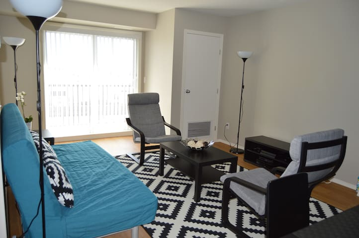 Private Room with Private Bathroom - Winnipeg - Apartment