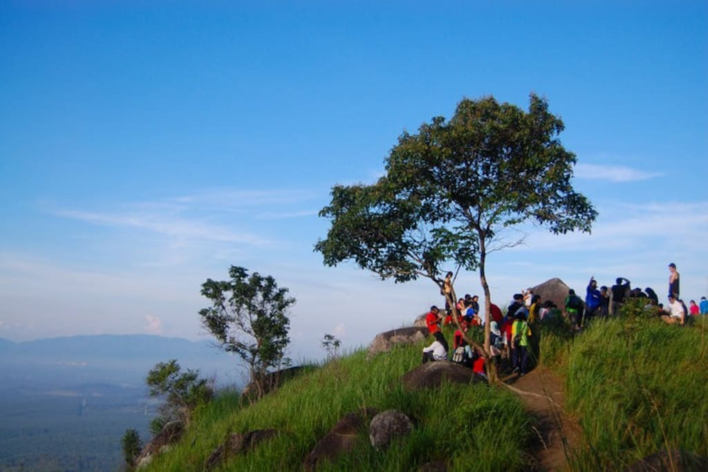 On the top of Broga Hill