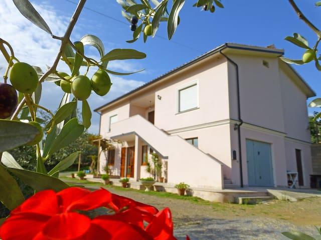 Appartamento in villa con ingresso indipedente - Teulada - Dom