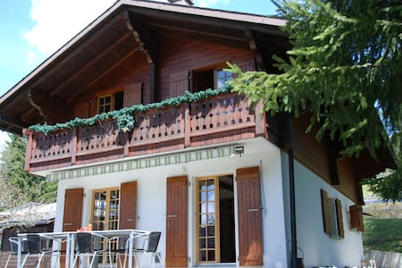 Lovely and complete Chalet - Les Diablerets - Chalet
