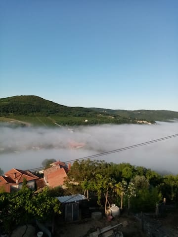View in the morning from the terasse