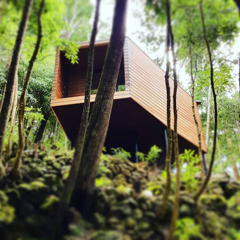 Biscoitos, Lodge para dormir na meio da natureza