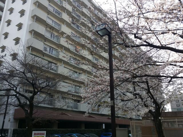 Condominium for group & personal Traveller