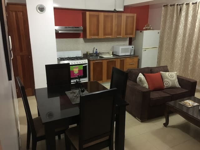 Fully equipped apartment in Gazcue