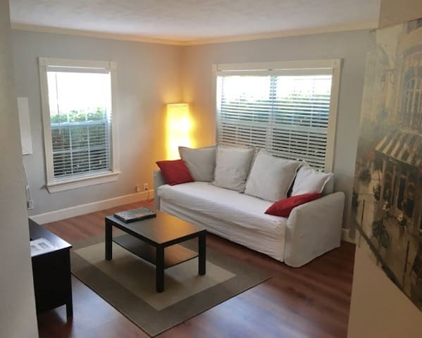 Cozy and comfortable 1 BR in Montrose Hist Dist