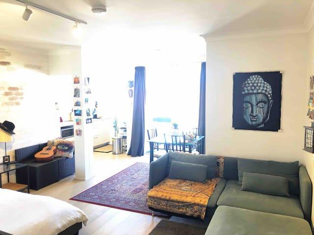 Bright stylish studio, Bondi Beach great location
