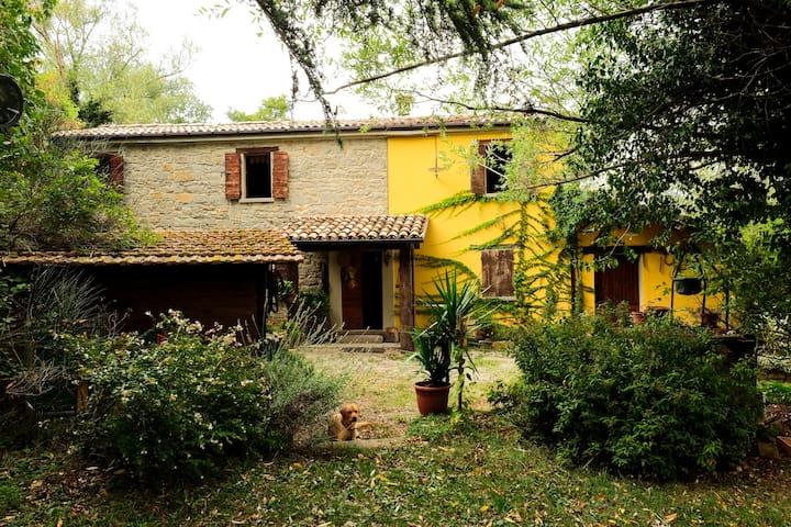 B&B Ca' Del Gallo, Valmarecchia RN - Novafeltria - Wikt i opierunek