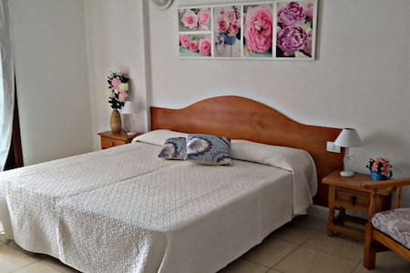 Large studio flat with lovely terrace and Wifi - Wohnung