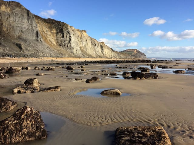 Come and explore the Jurassic Coast of Dorset, collect fossils from Charmouth Beach which is just a short drive from here, tread in the steps of the dinosaurs.