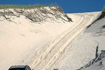 Guest discount on dune tours of the Cape Cod National Seashore.