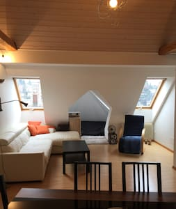 Beautiful apartment close to the city centre - Sankt Gallen - Daire