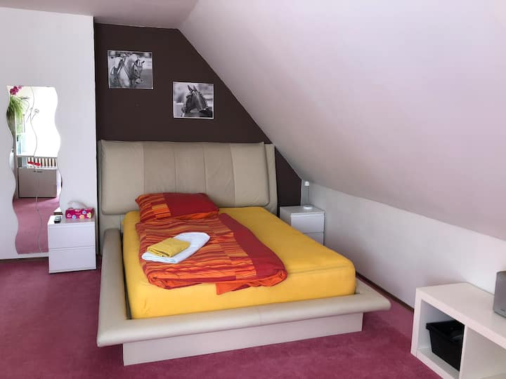 Double room with balcony near to Prague