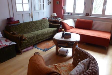 Schöne Altbauwohnung in Parknähe, 35305 Grünberg - Grünberg - Apartment