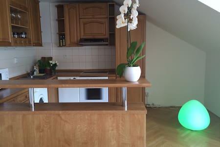 Modern Duplex Loft - Prag