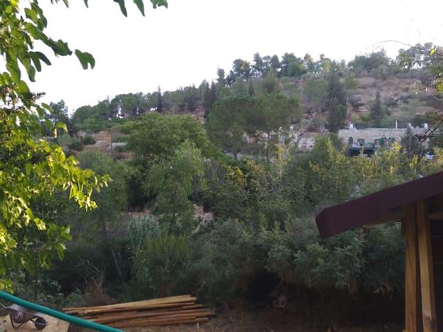Ein Karem - Nature in Jerusalem